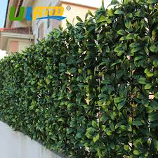 Uland Artificial Boxwood Hedge Privacy Ivy Fence For The Garden 20 X20 Uv Plastic Trellis Panels Plants For Decoration Wedding Fencing For Garden Fence Privacyfence Hedge Aliexpress