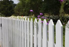 Colourful Fence Painting Ideas In Cork The Paint Store
