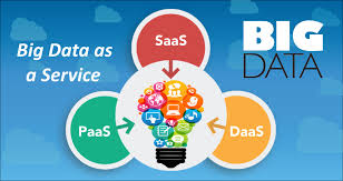 What are different types of Big Data as a Service (BDaaS)