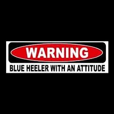 Warning Blue Heeler With An Attitude Car Decal Sticker Australian Cattle Dog Sticker Sign Bumper Stickers Stickers