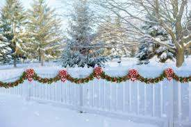 Free Images Tree Branch Snow Winter Flower Frost Decoration Rural Weather Holiday Christmas Fir Season Celebrate Garland Spruce Decorated Xmas Freezing Woody Plant White Picket Fence 5669x3779 1208742 Free Stock Photos Pxhere