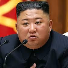 Kim Jong-un ill-health ...
