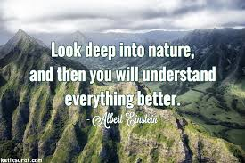 quotes bahasa inggris about nature dan artinya ketik surat