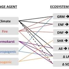 changing ecosystem influences on soil