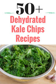 awesome dehydrated kale chips recipe