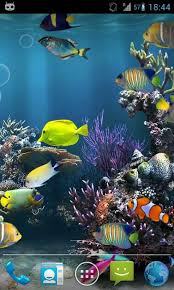 free 3d live fish wallpaper for galaxy