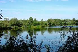 Tussen Slochteren en Froombosch ligt het natuurgebied De ...