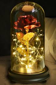 rose flower in glass dome on wood base