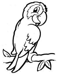 Kleurplaat Papegaai Kleurplaten Vogels Tekenen Kleurplaten