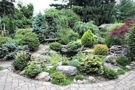 44 conifer garden plans a guide to