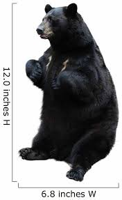 Black Bear White Wall Decal Wallmonkeys Com