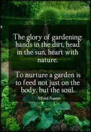 quotes about nature or nurture quotes