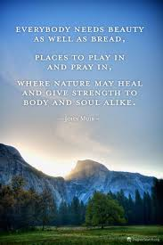nature birthday quotes google search john muir quotes nature
