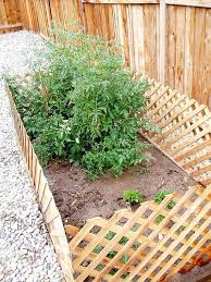 How To Dog Proof A Garden Small Backyard Gardens Backyard Garden Landscape Backyard Garden