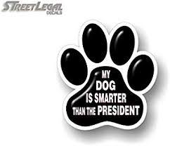 Amazon Com My Dog Is Smarter Than The President 5 5 Black Paw Print Vinyl Decal Dog Vehicle Decal Puppy Kitten Pawprint Decals For Car Window Vinyl Sticker Black Paw Print Automotive