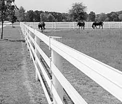 Fencing That Reaches Luxury Levels Expert Advice On Horse Care And Horse Riding