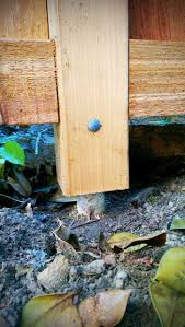 Easy Fence Post Repair Support For Corner And Round Post Also Tree Brace Inc Vat