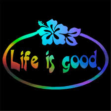Life Is Good With Hibiscus Flower Vinyl Decal Sticker Truck Car Window Summer Car Stickers Window Car Window Stickertruck Stickers Aliexpress