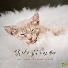 funny and inspirational good night messages