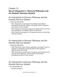 pathways and the somatic nervous system