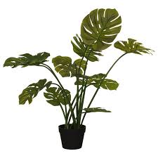 Artificial Cheese Plant Home Artificial Plants B M