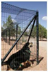 Fencing Options For Your Escape Artist Best Friends Network Partners