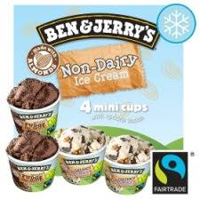 ben jerry s dairy free ice cream cup
