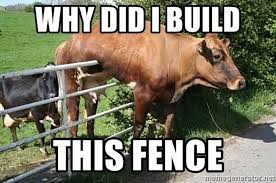 Why Did I Build This Fence Cow Fail Meme Generator
