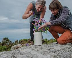 Rebecca Harvey & Polly Carter - Part Earth, Part Flower- Belgrave Gallery |  St Ives Cornwall