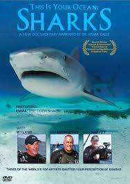 Award-Winning Shark Film