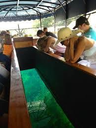 glass bottom boat picture of the