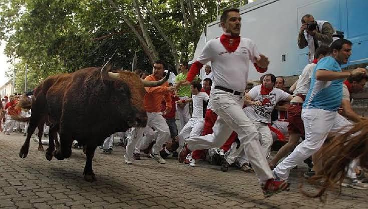 """ผลการค้นหารูปภาพสำหรับ เทศกาลซานเฟอร์มิน หนีวัวกระทิงที่สเปน"""""""