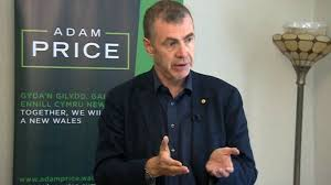 Plaid Cymru leadership: Adam Price rejects coalition idea - BBC News