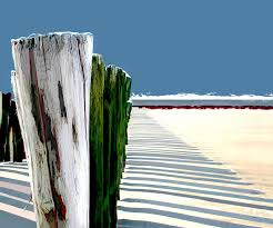 Abstracted Beach Dune Fence Painting By Elaine Plesser