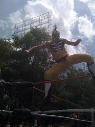 Renta Ring lucha libre Renta Ring Box – LIENZO CHARRO DE ...