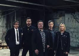 AMANDA FAIREY BIRTHDAY - The Chills – The Music Preview Guide To ...