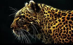 jaguar wallpapers 63 images