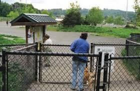 The Politics Of Creating A Dog Park The Bark
