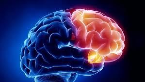 Epilepsia, ¿cómo reducir el riesgo de convulsiones de forma natural ...