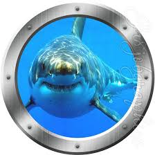Shark Wall Decal Great White Shark Jaws Window Frame Etsy In 2020 Porthole Wall Decal Kids Room Wall Art Great White Shark