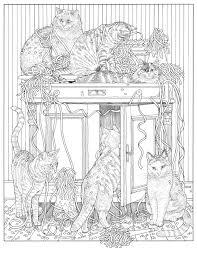 Inkijkexemplaar Franciens Kattenkleurboek Francien Van Westering