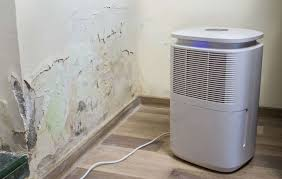 mold killing primer and mold resistant