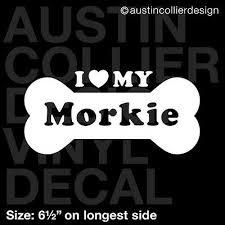 6 5 Morkie Vinyl Decal Car Window Laptop Sticker Dog Breed Rescue Ebay