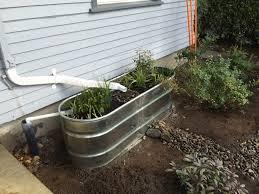 seattle garden club 12 000 rain gardens