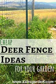 Cheap Deer Fence Ideas For Your Garden Kaits Garden