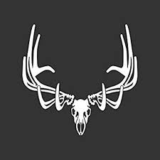 Amazon Com Elk Skull Hunting Decal Automotive
