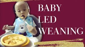 Nhật ký ăn dặm tự chỉ huy của Jay - Lưu ý khi bé ăn bốc - Baby led ...