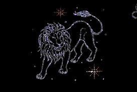 wallpaper lion zodiac sign leo