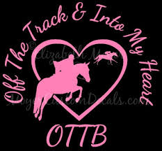 Ottb Off Track Into My Heart Thoroughbred Jumper Jumping Horse Etsy In 2020 Ottb Thoroughbred Horse Sign
