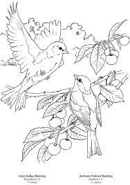 Vogels Zelf Reeds Ingekleurd Kleurplaten Mandala Kleurplaten